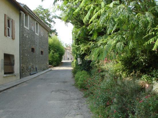 Chateau Puy : Lane outside Gite
