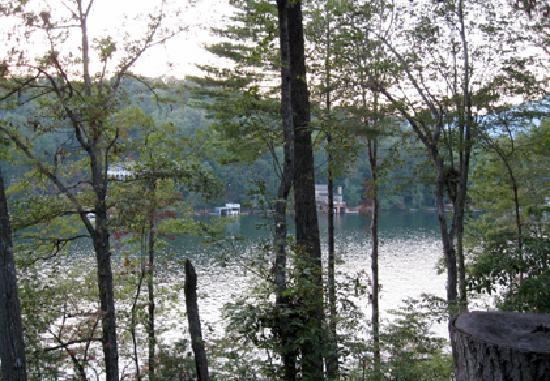 The Lodge on Lake Lure: view from room