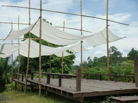 Paganakan Dii Tropical Retreat: Terraza
