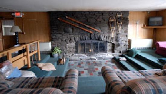 Chalet Killington : Lounge