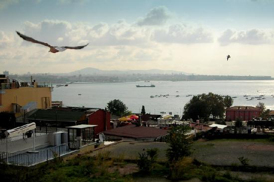 Cem Sultan Hotel: Bosporus view in the morning
