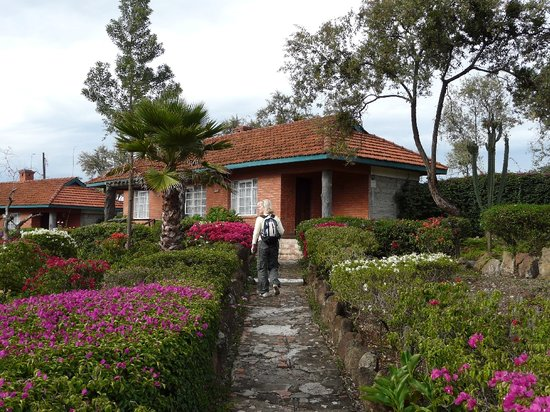 Lake Elementaita, Kenya: Grounds and exterior of rooms