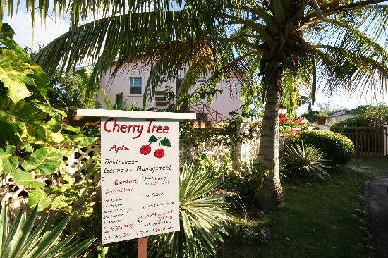 Cherry Tree Apartments: Vor der Anlage