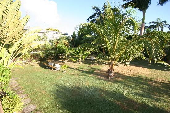 Cherry Tree Apartments: Sitzgruppen im Garten