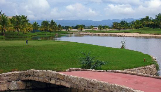 El Tigre Golf at Paradise Village: El Tigre # 17 tee
