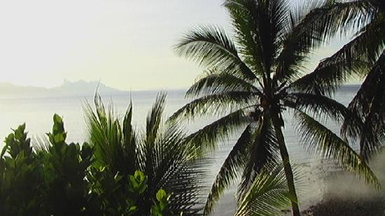 Peters Dive Resort: Pardise