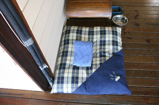 Half Moon Hide-Away: Bed and presents for animals.