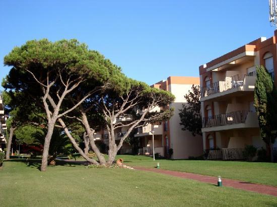 Apartamentos Las Dunas: Garten