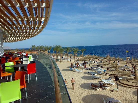 Reef Oasis Blue Bay Resort: spiaggia del Blue Bay