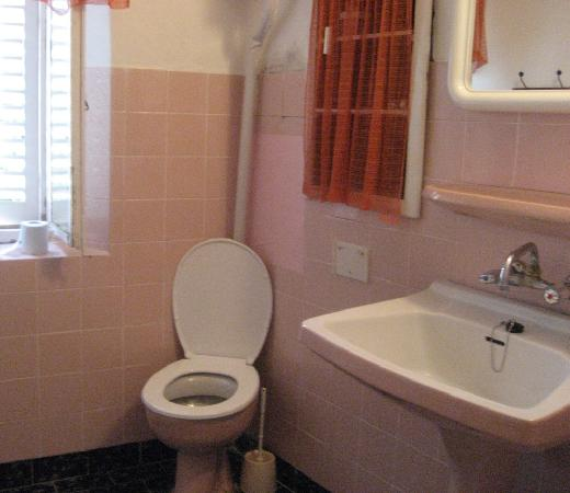 Roberta's Guest House: The bathroom