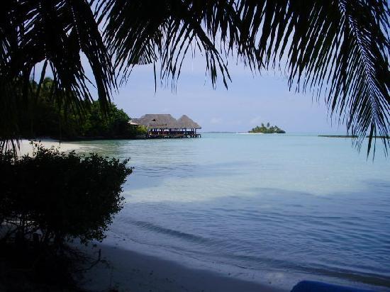 Rihiveli by Castaway Hotels & Escapes : vu du bungalow