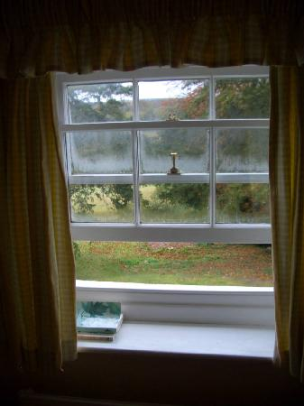 The Old Vicarage: View from the window