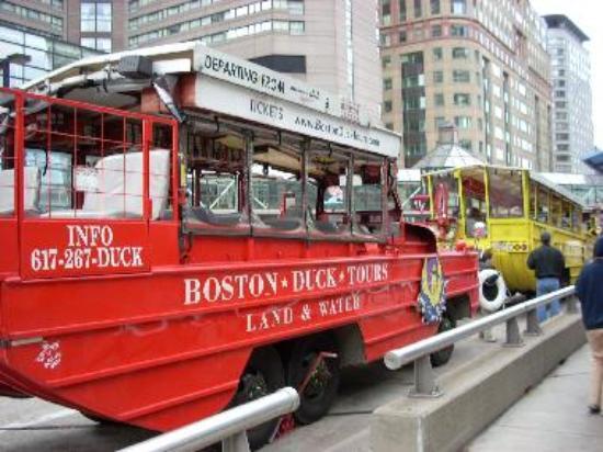 Boston Ducks ready for passengers