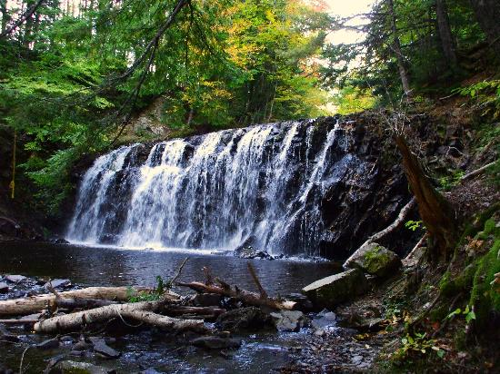 Cabot Trail : Gillis' Falls 2(East Bay area)