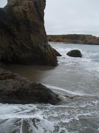 Surf and Sand Lodge: Same beach