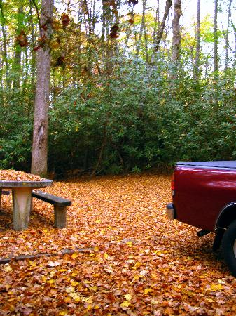 Franklin, Karolina Północna: Standing Indian Campground, Site 67