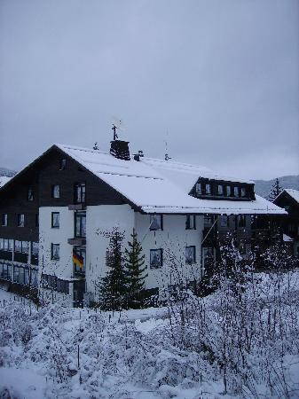 Luginsland in winter