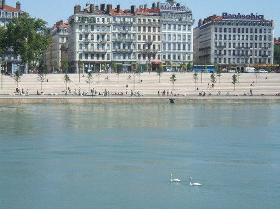 Lyon, Frankreich: Deux cygnes...