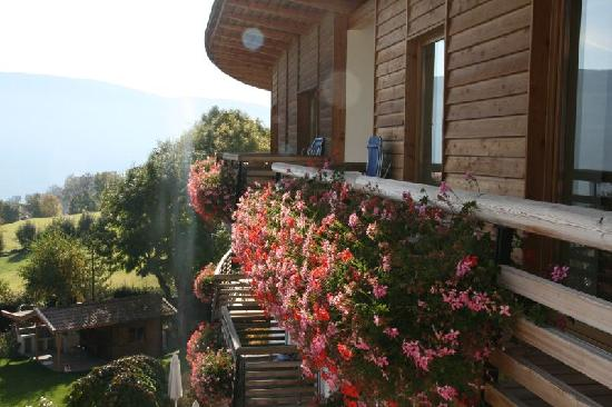 Hotel Dolomitenblick: terrazza
