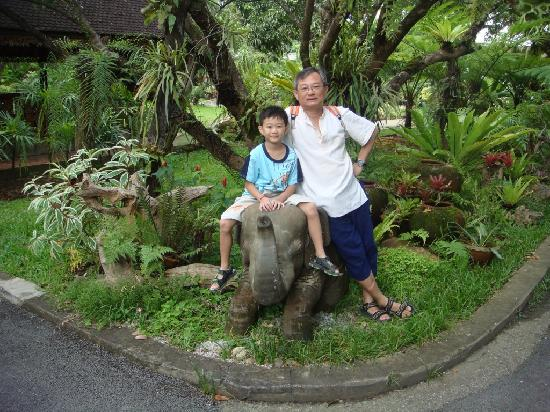 Eco Resort Chiang Mai: Welcome by the 1st baby elephant once entered imm eco hotel