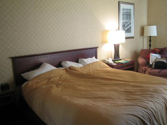 Holiday Inn Washington-Dulles Int'l Airport : Room with bed