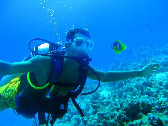 Incontri per Scuba Divers UK