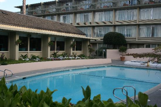 pool at carmel mission inn picture of carmel mission inn. Black Bedroom Furniture Sets. Home Design Ideas