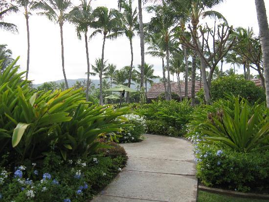 b2323ff7f4893 tennis court - Picture of Kauai Coast Resort at the Beachboy