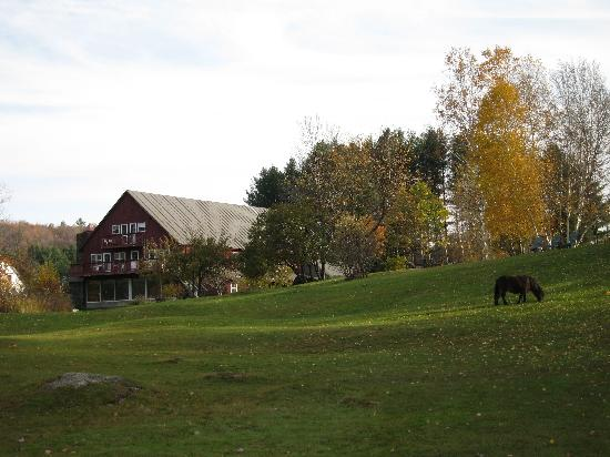 Mountain Meadows Lodge: A view of the Inn with the pony.