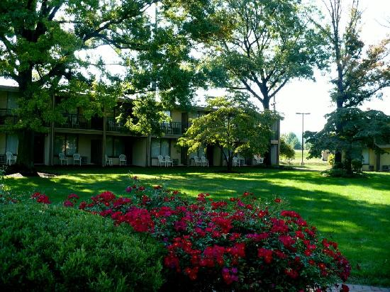 BEST WESTERN PLUS The Inn at King of Prussia: The garden in Summer