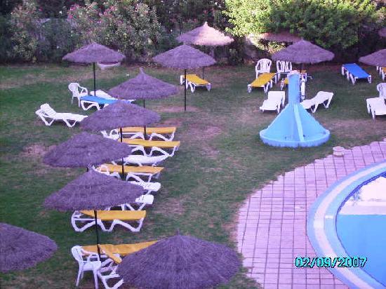 Majesty Golf Hotel: ERBA PUNGENTE