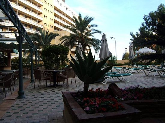 MS Aguamarina Apartments: The bar/pool area