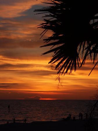 Turtle Bay Condos: Sunset at Manasota Key