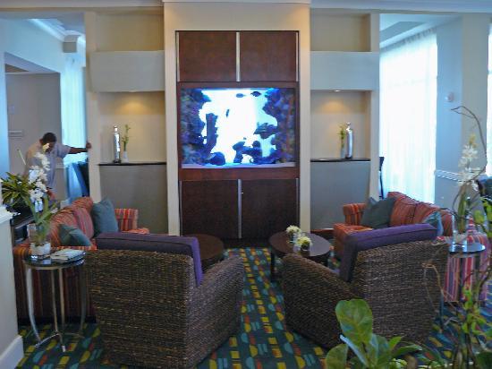 Hilton Garden Inn Tampa Airport Westshore: Lobby area