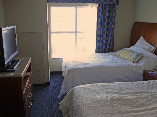 Hilton Garden Inn Tampa Airport Westshore: Bedroom