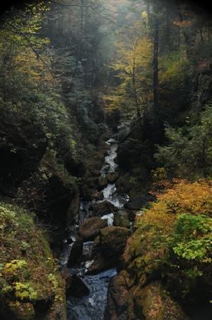 Alvin's Log Cabins: the nearby Bushkill Falls