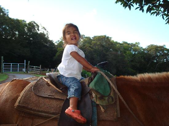 Molokai Mule Ride : If she can do it...so can you!