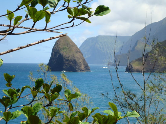 Kalaupapa, HI: The tallest Sea Cliffs in the World!