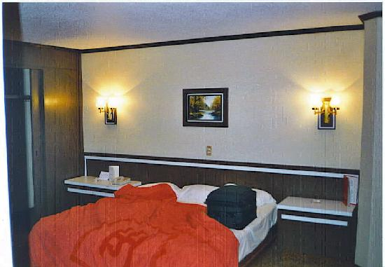 Ramada Reforma Mexico City: Partial view of room