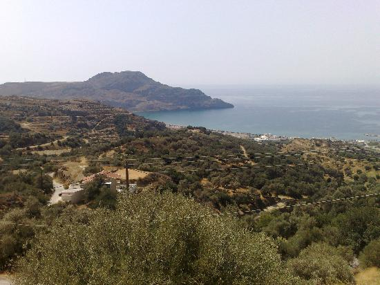 The View From Xrisoula Studios