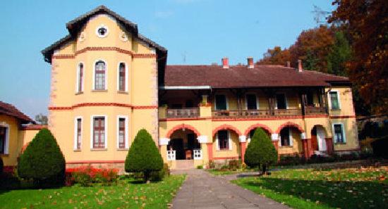 Siste liten-hoteller i Vrnjacka Banja