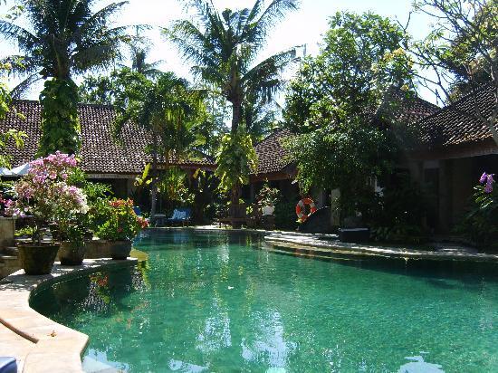 Tamukami Hotel: Pool