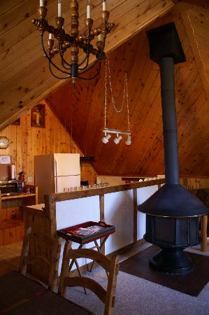 Blue Spruce RV Park & Cabins: kitchen