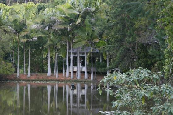 Amazing Wollumbin Palms Retreat at Mt Warning: Pavillion on lake