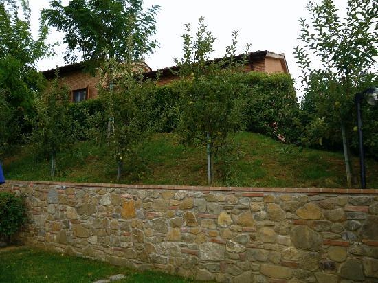 Tenuta Badia '99: alberi da frutto