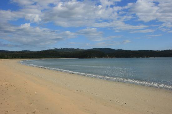 The Seahorse Inn: Beach on Two Fold Bay