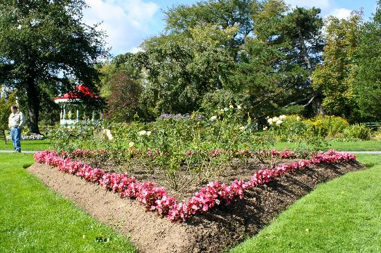 Halifax Public Gardens : Another shot of the Gardens