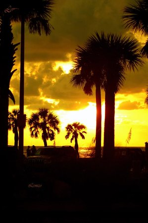 Clearwater, FL: Sunset collection