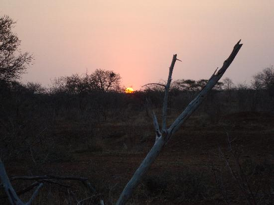 White Elephant Safari Lodge: Sunset in the bush