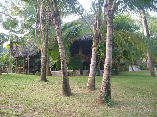 Diani Marine Divers Village: Dining hall, closed due to lack of peolpe.